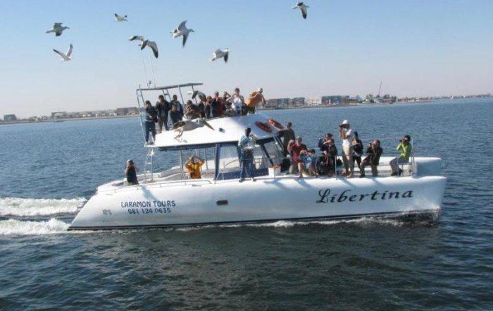 boat cruise in walvis bay namibia
