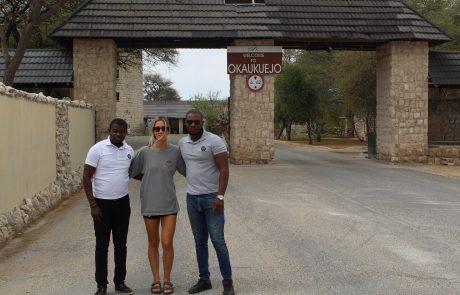 destination to okaukuejo namibia