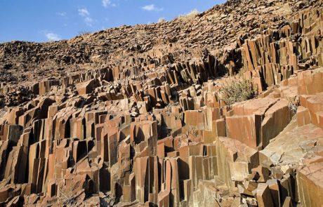 Petrified forest, Khorixas tour in namibia